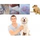 Naturligt Lopp- och Fästingshalsband för Hund